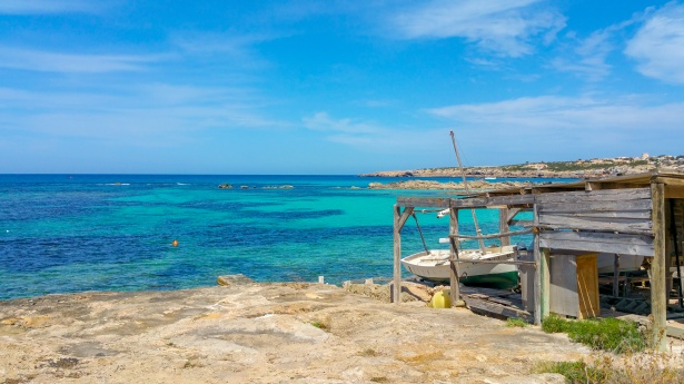 Vive Formentera este verano!